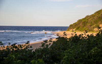 Finding Deeper Meaning in Mozambique
