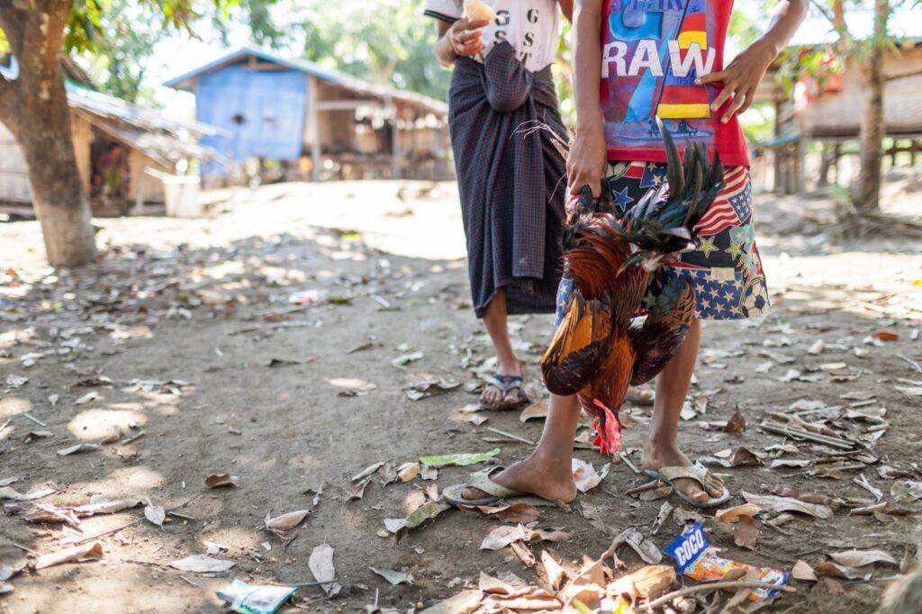 Myanmar Burma Guided Village Trekking
