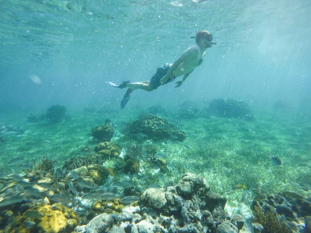 Belize Snorkeling Adventure